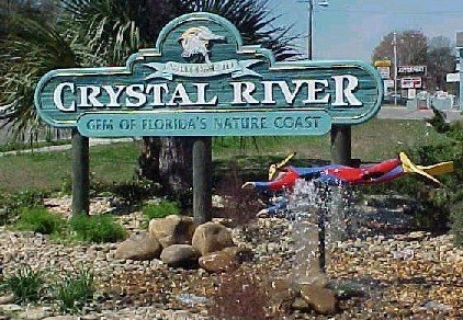 serving crystal river - spring hill gold plus coin shop gold dealer coin dealer